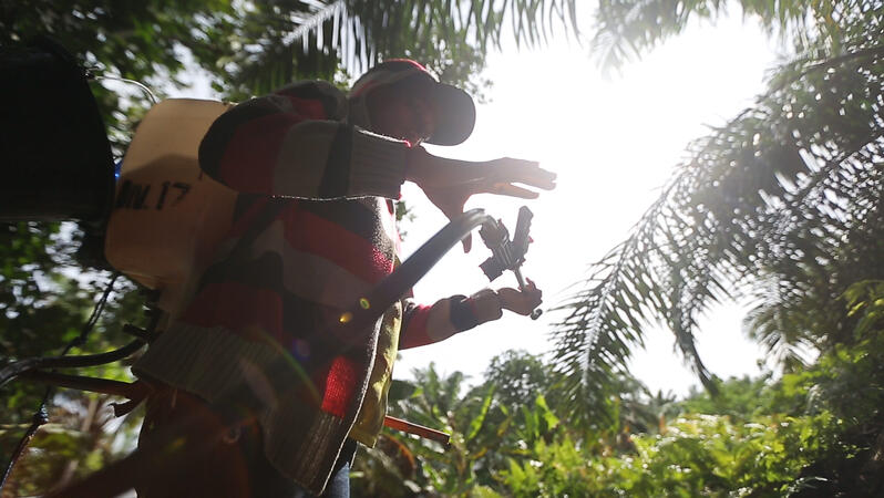 Das Bild zeigt einen Arbeiter auf einer Plantage mit Rucksackspritzgerät